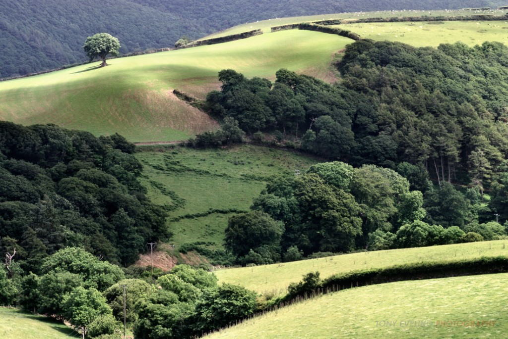 Somerset, England is the possible birthplace of Saint Patrick